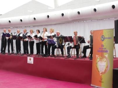 Actuación musical Día Voluntariado